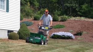 Me Lawn Renovation