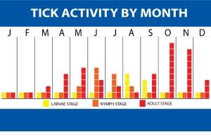 Tick activity Chart